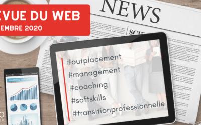 Revue du web management : novembre 2020